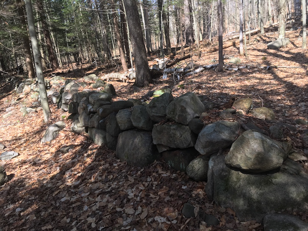 Old stone wall in woods